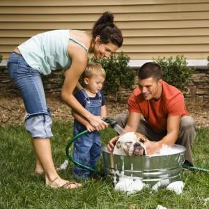 texas family health insurance
